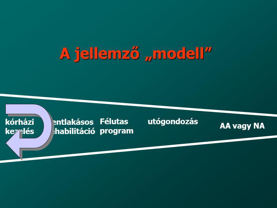 """A jellemző """"modell"""" kórházi kezelés bentlakásos rehabilitáció Félutas program utógondozás AA vagy NA"""