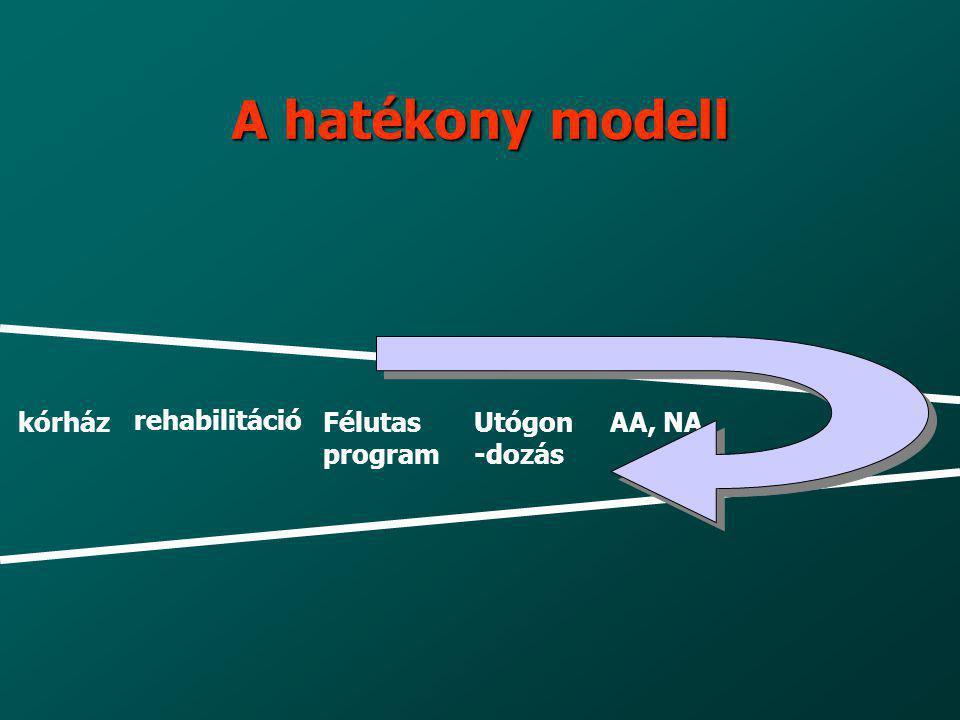 A hatékony modell kórház rehabilitáció Félutas program Utógon -dozás AA, NA