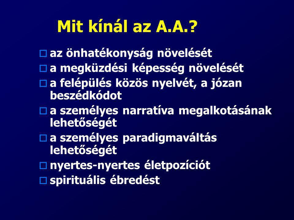 Mit kínál az A.A.?  az önhatékonyság növelését  a megküzdési képesség növelését  a felépülés közös nyelvét, a józan beszédkódot  a személyes narra