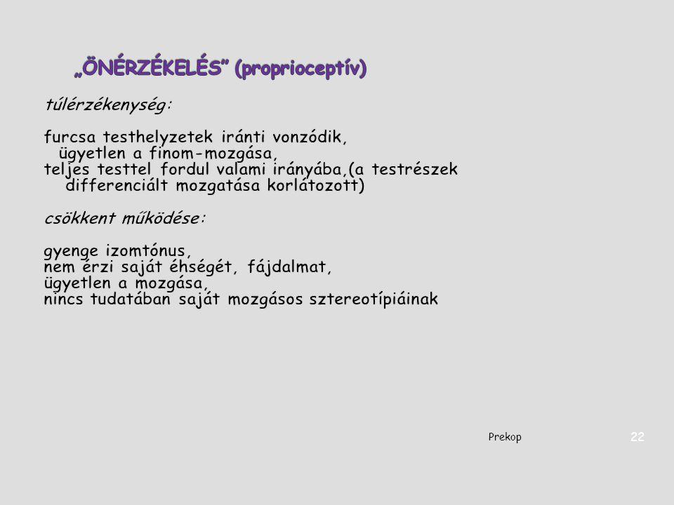 Prekop 22