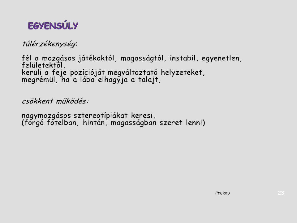 Prekop 23