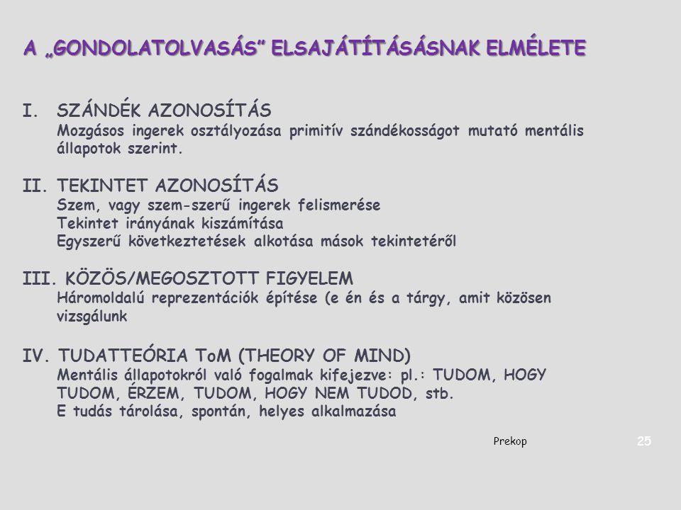 """A """"GONDOLATOLVASÁS"""" ELSAJÁTÍTÁSÁSNAK ELMÉLETE I.SZÁNDÉK AZONOSÍTÁS Mozgásos ingerek osztályozása primitív szándékosságot mutató mentális állapotok sze"""