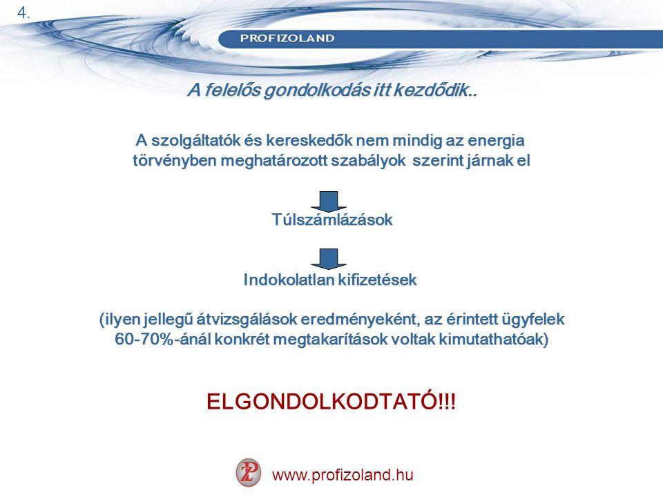 A felelős gondolkodás itt kezdődik..www.profizoland.hu VISSZATEKINTÉS 2008.