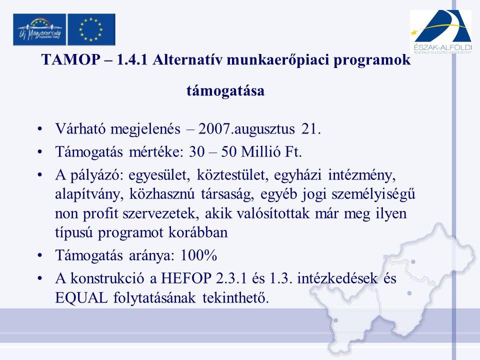 TAMOP – 1.4.1 Alternatív munkaerőpiaci programok támogatása •Várható megjelenés – 2007.augusztus 21.