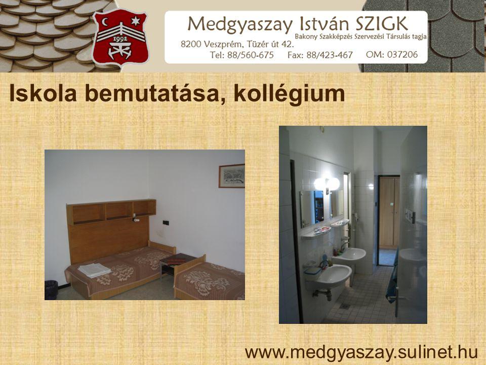 Iskola bemutatása, kollégium www.medgyaszay.sulinet.hu
