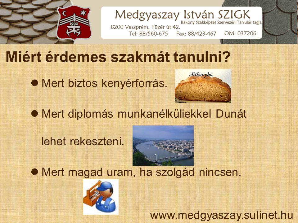 Miért érdemes szakmát tanulni? www.medgyaszay.sulinet.hu  Mert biztos kenyérforrás.  Mert diplomás munkanélküliekkel Dunát lehet rekeszteni.  Mert