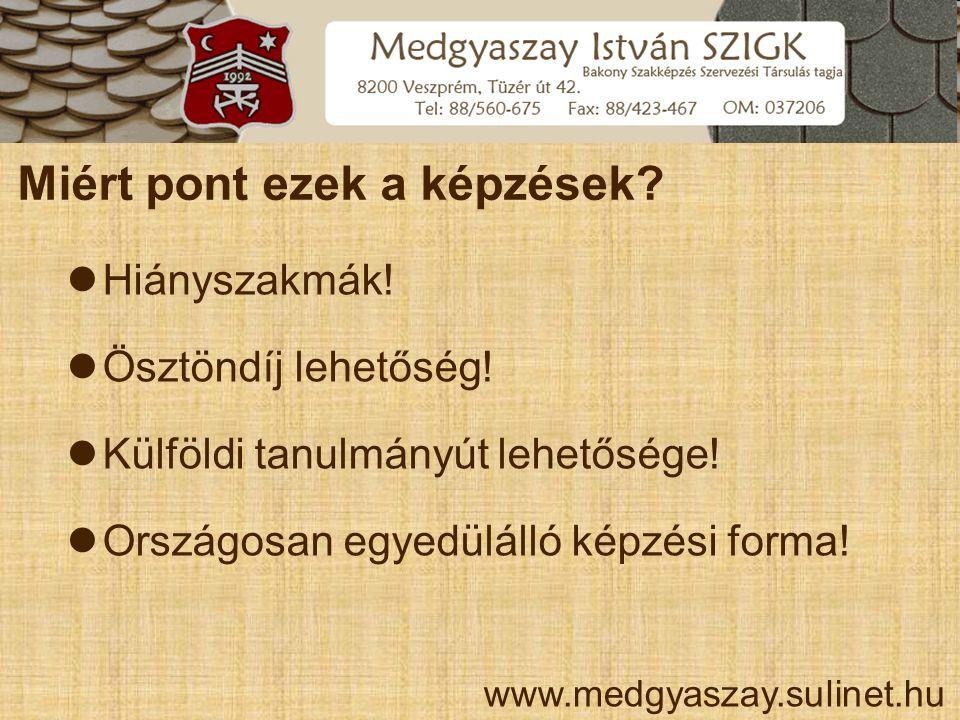 Medgyaszay István Szakképző Iskola, Gimnázium és Kollégium Magyarországon ez hol érhető el?