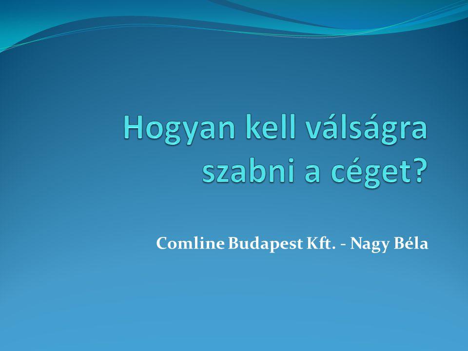 Bemutatkozás  Nagy Béla a Comline tulajdonosa  Comline Budapest Kft.