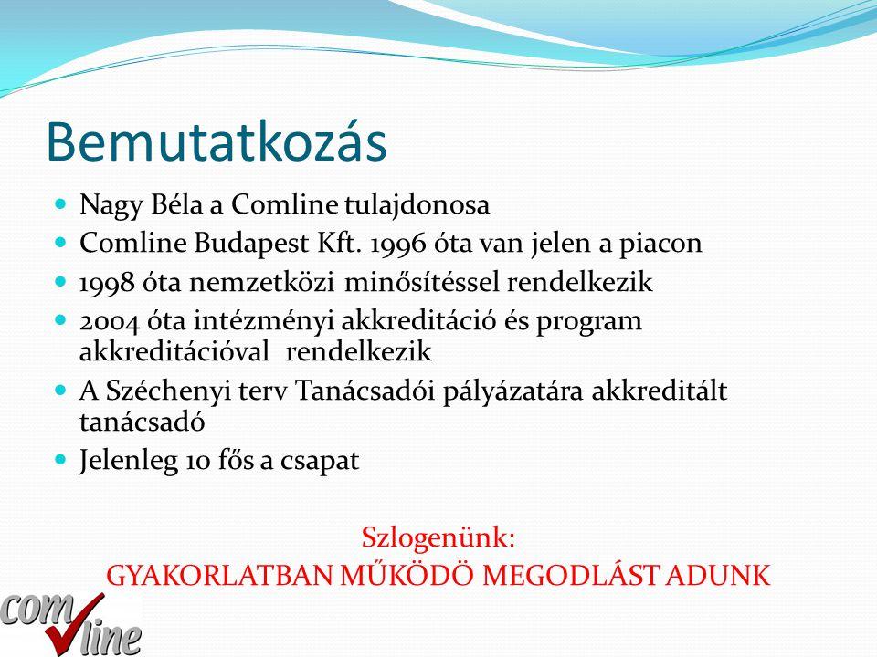Bemutatkozás  Nagy Béla a Comline tulajdonosa  Comline Budapest Kft. 1996 óta van jelen a piacon  1998 óta nemzetközi minősítéssel rendelkezik  20