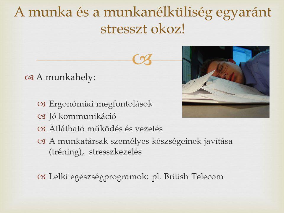   A munkahely:  Ergonómiai megfontolások  Jó kommunikáció  Átlátható működés és vezetés  A munkatársak személyes készségeinek javítása (tréning)