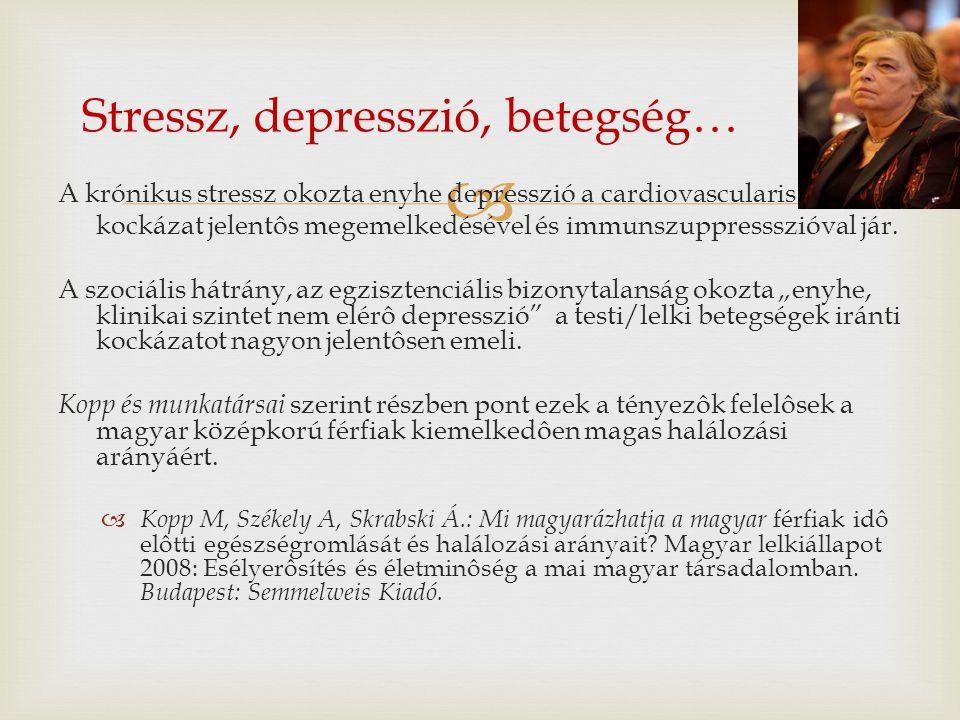  A krónikus stressz okozta enyhe depresszió a cardiovascularis kockázat jelentôs megemelkedésével és immunszuppressszióval jár. A szociális hátrány,
