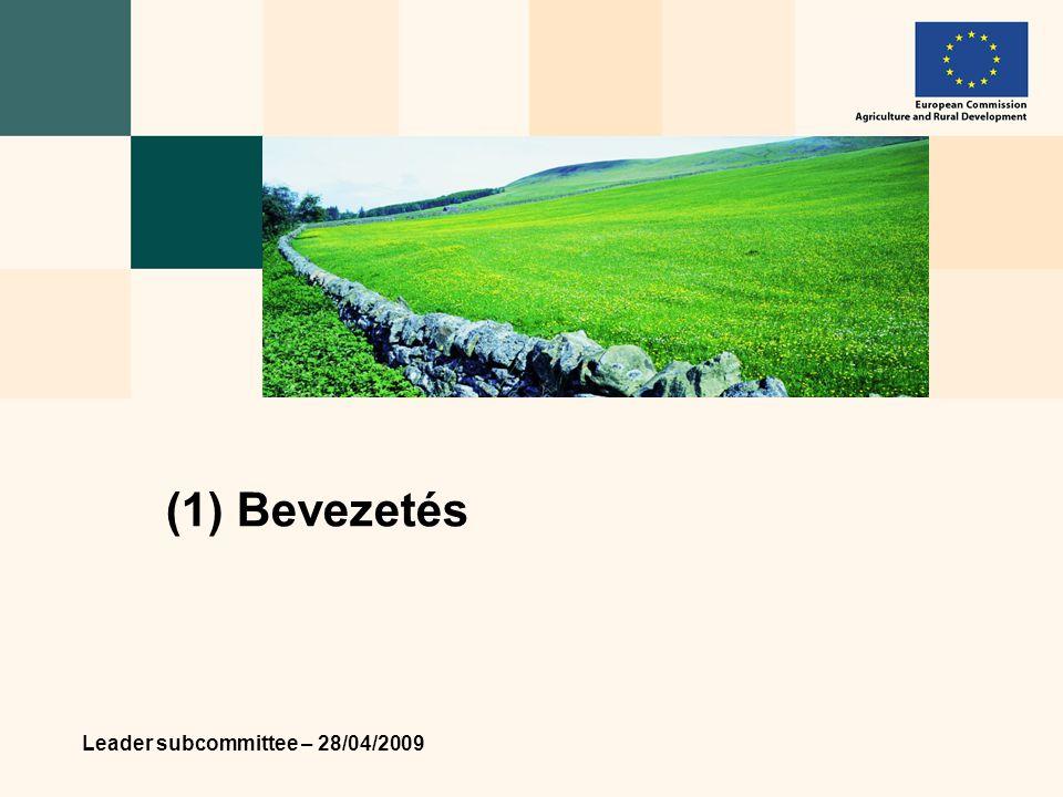 Leader subcommittee – 28/04/2009 14 3) Tematikus és elemző tevékenységek  Cél: A közös érdeklődési területek kulcs- témáinak azonosítása a konkrét eredményekért.