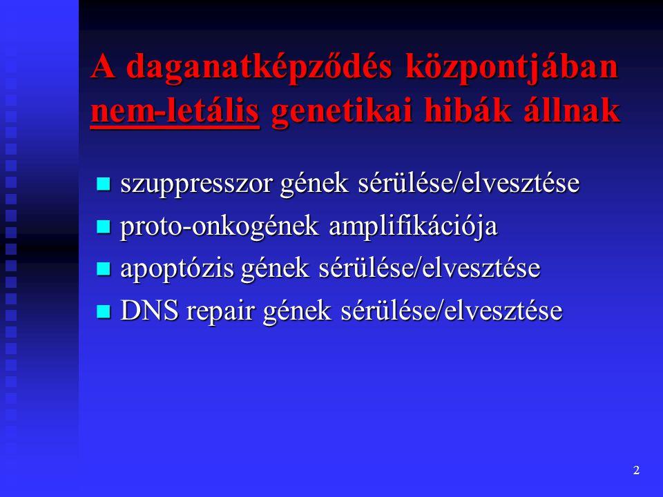 2  szuppresszor gének sérülése/elvesztése  proto-onkogének amplifikációja  apoptózis gének sérülése/elvesztése  DNS repair gének sérülése/elvesztése A daganatképződés központjában nem-letális genetikai hibák állnak