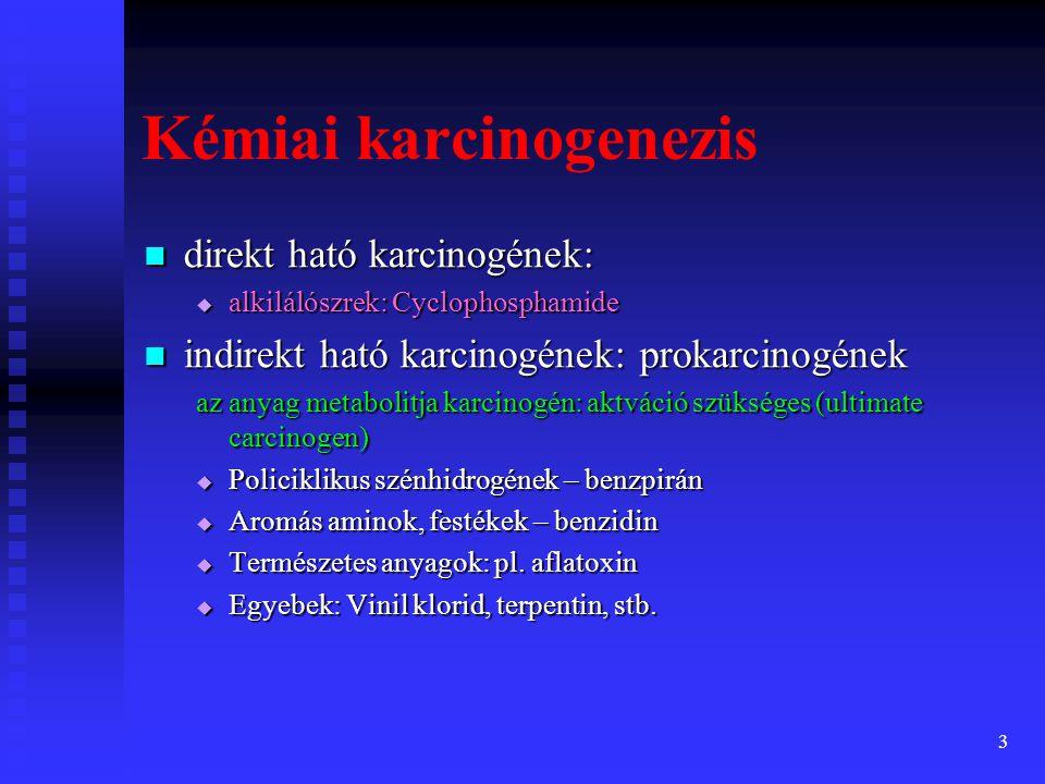 3  direkt ható karcinogének:  alkilálószrek: Cyclophosphamide  indirekt ható karcinogének: prokarcinogének az anyag metabolitja karcinogén: aktváció szükséges (ultimate carcinogen)  Policiklikus szénhidrogének – benzpirán  Aromás aminok, festékek – benzidin  Természetes anyagok: pl.