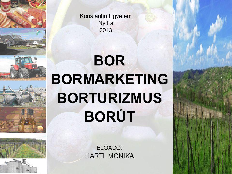 1 Konstantin Egyetem Nyitra 2013 BOR BORMARKETING BORTURIZMUS BORÚT ELŐADÓ: HARTL MÓNIKA