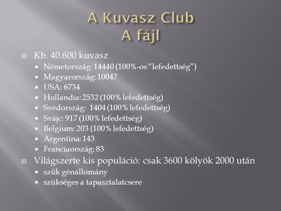 """ Kb. 40.600 kuvasz  Németország: 14440 (100%-os """"lefedettség"""")  Magyarország: 10047  USA: 6734  Hollandia: 2532 (100% lefedettség)  Svédország:"""