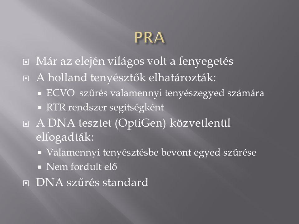  Már az elején világos volt a fenyegetés  A holland tenyésztők elhatározták:  ECVO szűrés valamennyi tenyészegyed számára  RTR rendszer segítségké
