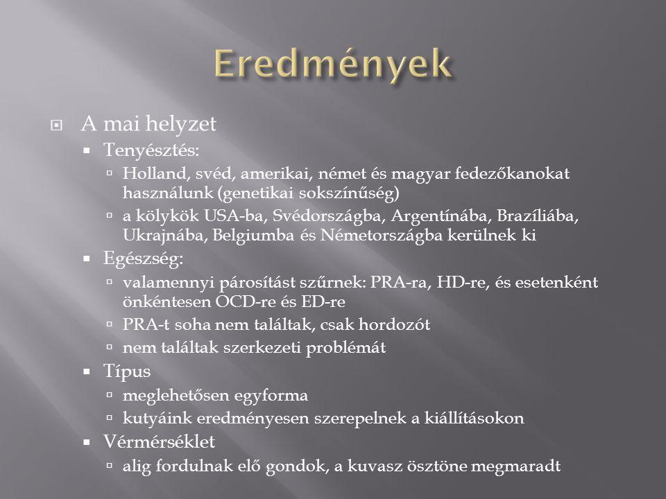  A mai helyzet  Tenyésztés:  Holland, svéd, amerikai, német és magyar fedezőkanokat használunk (genetikai sokszínűség)  a kölykök USA-ba, Svédorsz
