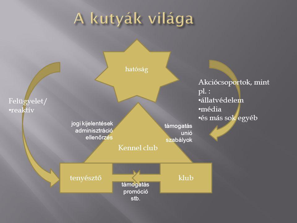 tenyésztőklub Kennel club hatóság Felügyelet/ • reaktív Akciócsoportok, mint pl.