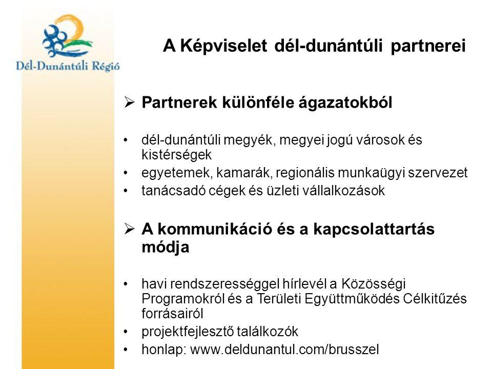 A Képviselet dél-dunántúli partnerei  Partnerek különféle ágazatokból •dél-dunántúli megyék, megyei jogú városok és kistérségek •egyetemek, kamarák, regionális munkaügyi szervezet •tanácsadó cégek és üzleti vállalkozások  A kommunikáció és a kapcsolattartás módja •havi rendszerességgel hírlevél a Közösségi Programokról és a Területi Együttműködés Célkitűzés forrásairól •projektfejlesztő találkozók •honlap: www.deldunantul.com/brusszel