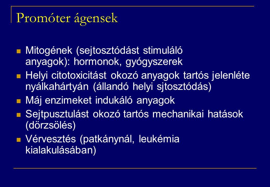 Promóter ágensek  Mitogének (sejtosztódást stimuláló anyagok): hormonok, gyógyszerek  Helyi citotoxicitást okozó anyagok tartós jelenléte nyálkahártyán (állandó helyi sjtosztódás)  Máj enzimeket indukáló anyagok  Sejtpusztulást okozó tartós mechanikai hatások (dörzsölés)  Vérvesztés (patkánynál, leukémia kialakulásában)