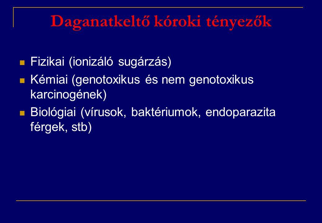 Daganatkeltő kóroki tényezők  Fizikai (ionizáló sugárzás)  Kémiai (genotoxikus és nem genotoxikus karcinogének)  Biológiai (vírusok, baktériumok, e