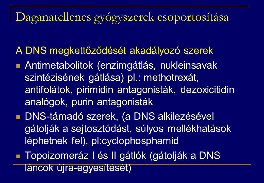 Daganatellenes gyógyszerek csoportosítása A DNS megkettőződését akadályozó szerek  Antimetabolitok (enzimgátlás, nukleinsavak szintézisének gátlása)