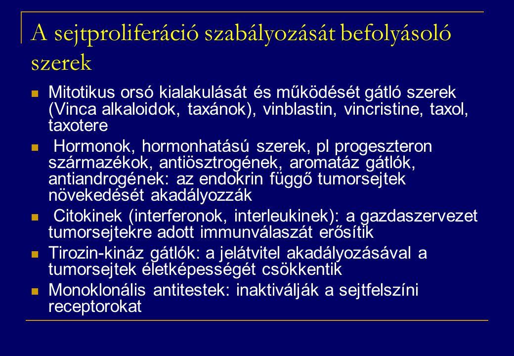 A sejtproliferáció szabályozását befolyásoló szerek  Mitotikus orsó kialakulását és működését gátló szerek (Vinca alkaloidok, taxánok), vinblastin, vincristine, taxol, taxotere  Hormonok, hormonhatású szerek, pl progeszteron származékok, antiösztrogének, aromatáz gátlók, antiandrogének: az endokrin függő tumorsejtek növekedését akadályozzák  Citokinek (interferonok, interleukinek): a gazdaszervezet tumorsejtekre adott immunválaszát erősítik  Tirozin-kináz gátlók: a jelátvitel akadályozásával a tumorsejtek életképességét csökkentik  Monoklonális antitestek: inaktiválják a sejtfelszíni receptorokat
