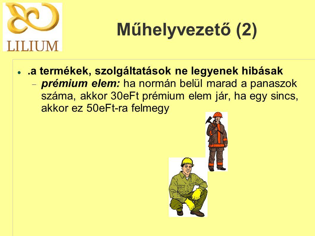 Műhelyvezető (2) .a termékek, szolgáltatások ne legyenek hibásak  prémium elem: ha normán belül marad a panaszok száma, akkor 30eFt prémium elem jár, ha egy sincs, akkor ez 50eFt-ra felmegy