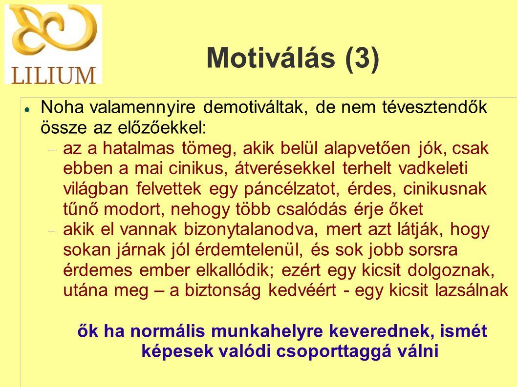Motiválás (3)  Noha valamennyire demotiváltak, de nem tévesztendők össze az előzőekkel:  az a hatalmas tömeg, akik belül alapvetően jók, csak ebben