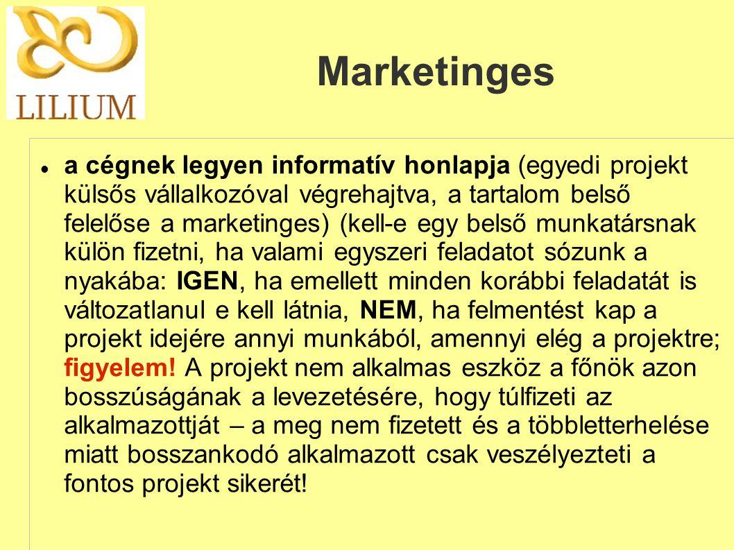 Marketinges  a cégnek legyen informatív honlapja (egyedi projekt külsős vállalkozóval végrehajtva, a tartalom belső felelőse a marketinges) (kell-e e