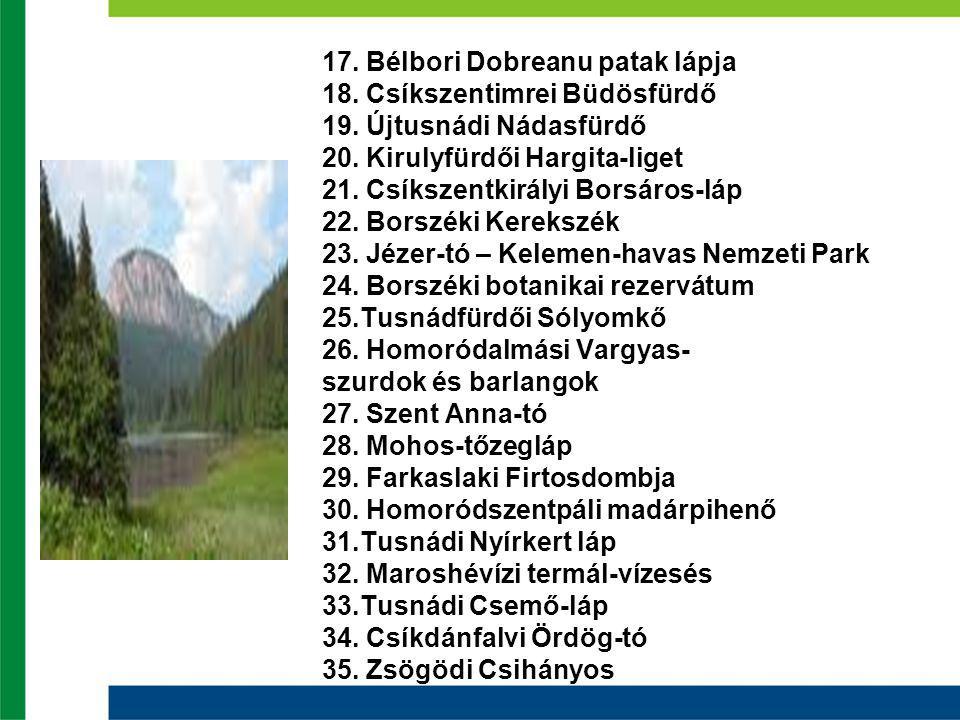 17. Bélbori Dobreanu patak lápja 18. Csíkszentimrei Büdösfürdő 19.
