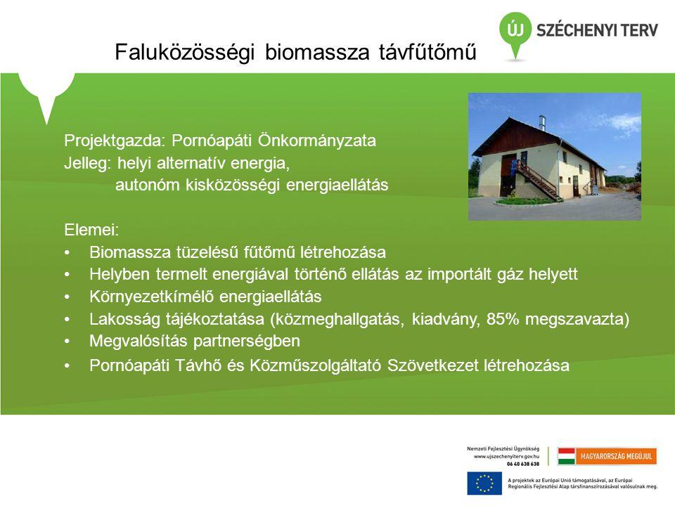 Faluközösségi biomassza távfűtőmű Projektgazda: Pornóapáti Önkormányzata Jelleg: helyi alternatív energia, autonóm kisközösségi energiaellátás Elemei: