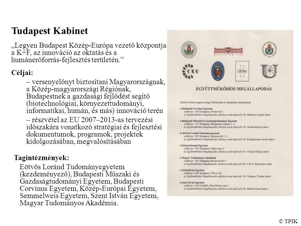 """Tudapest Kabinet """"Legyen Budapest Közép-Európa vezető központja a K+F, az innováció az oktatás és a humánerőforrás-fejlesztés területén. Céljai: – versenyelőnyt biztosítani Magyarországnak, a Közép-magyarországi Régiónak, Budapestnek a gazdasági fejlődést segítő (biotechnológiai, környezettudományi, informatikai, humán, és más) innováció terén – részvétel az EU 2007–2013-as tervezési időszakára vonatkozó stratégiai és fejlesztési dokumentumok, programok, projektek kidolgozásában, megvalósításában Tagintézmények: Eötvös Loránd Tudományegyetem (kezdeményező), Budapesti Műszaki és Gazdaságtudományi Egyetem, Budapesti Corvinus Egyetem, Közép-Európai Egyetem, Semmelweis Egyetem, Szent István Egyetem, Magyar Tudományos Akadémia."""