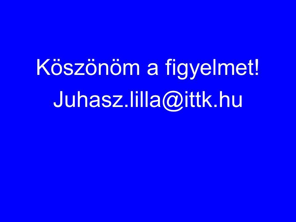 Köszönöm a figyelmet! Juhasz.lilla@ittk.hu