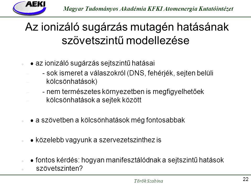 Török Szabina Magyar Tudományos Akadémia KFKI Atomenergia Kutatóintézet 22 Az ionizáló sugárzás mutagén hatásának szövetszintű modellezése   az ioni