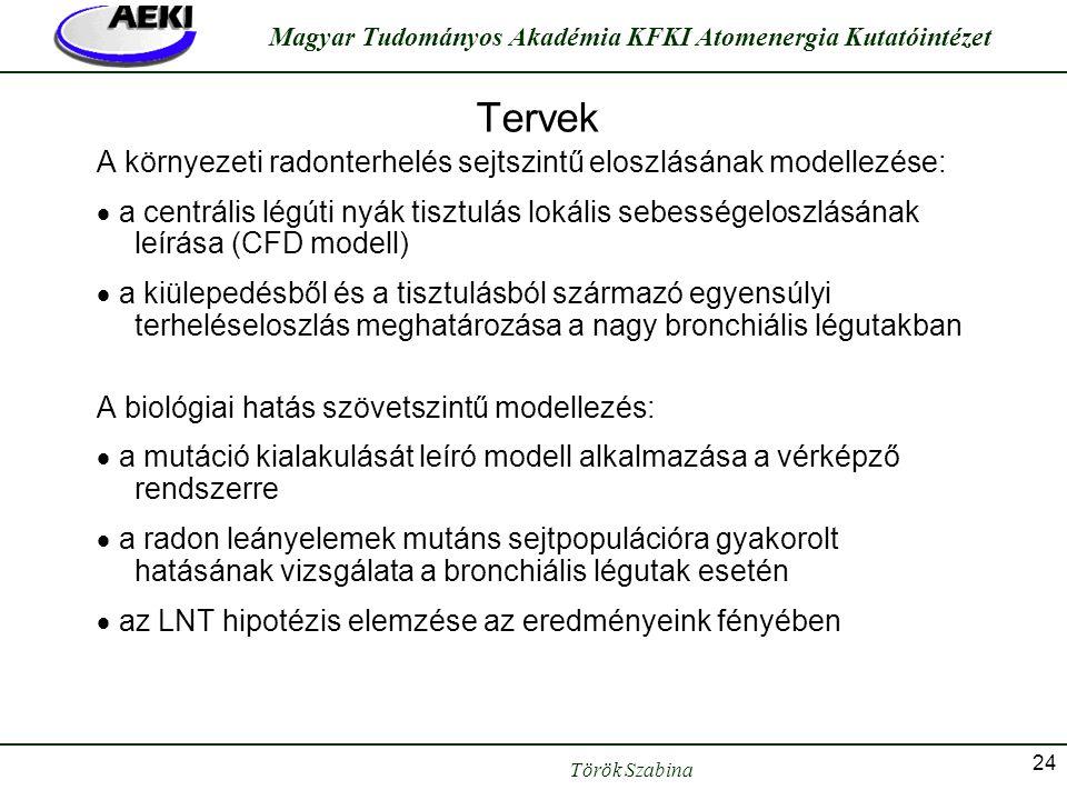 Török Szabina Magyar Tudományos Akadémia KFKI Atomenergia Kutatóintézet 24 Tervek A környezeti radonterhelés sejtszintű eloszlásának modellezése:  a