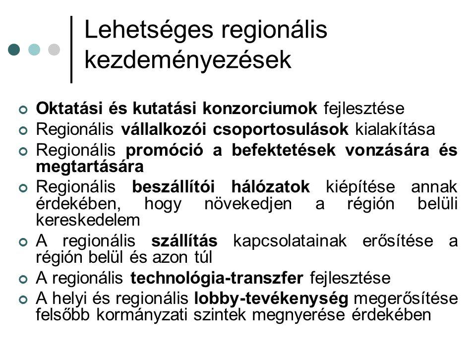 Lehetséges regionális kezdeményezések Oktatási és kutatási konzorciumok fejlesztése Regionális vállalkozói csoportosulások kialakítása Regionális promóció a befektetések vonzására és megtartására Regionális beszállítói hálózatok kiépítése annak érdekében, hogy növekedjen a régión belüli kereskedelem A regionális szállítás kapcsolatainak erősítése a régión belül és azon túl A regionális technológia-transzfer fejlesztése A helyi és regionális lobby-tevékenység megerősítése felsőbb kormányzati szintek megnyerése érdekében