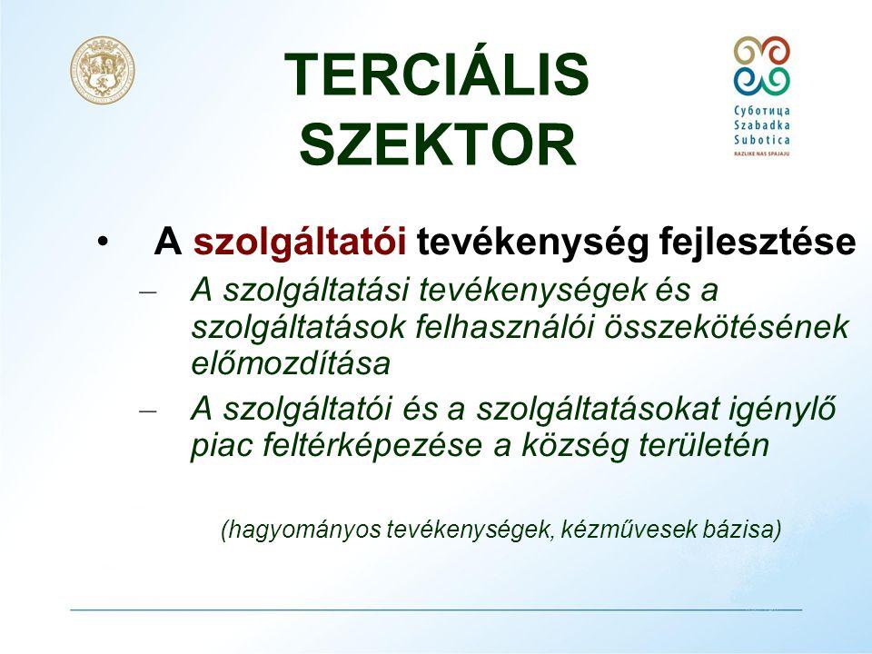 TERCIÁLIS SZEKTOR •A város elhelyezése Délkelet Európa logisztikai rendszerében.