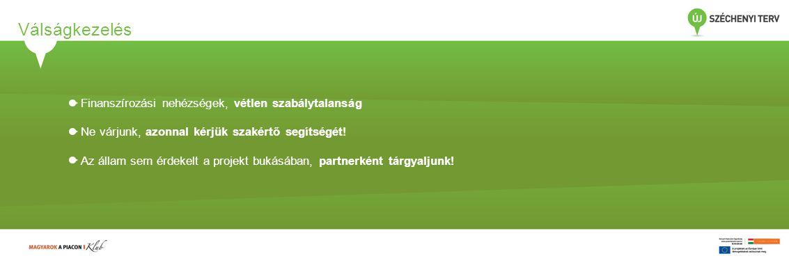 Középtávú teendők 2014-2020 Nemzetközi és akadémiai kapcsolatok Innováció, KKV fejlesztés, foglalkoztatás, energetika Megéri beruházni a projektkultúrába Projektportfólió-kezelés Módszertan, kontrolling Szervezet Informatikai háttér