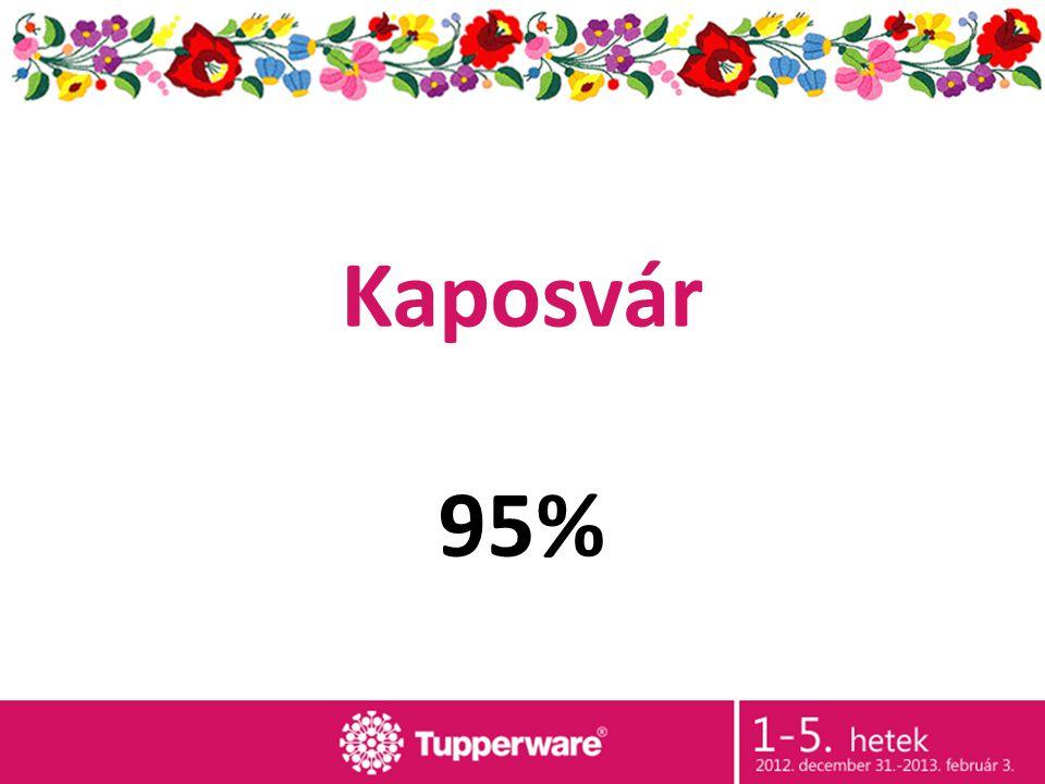 Kaposvár 95%