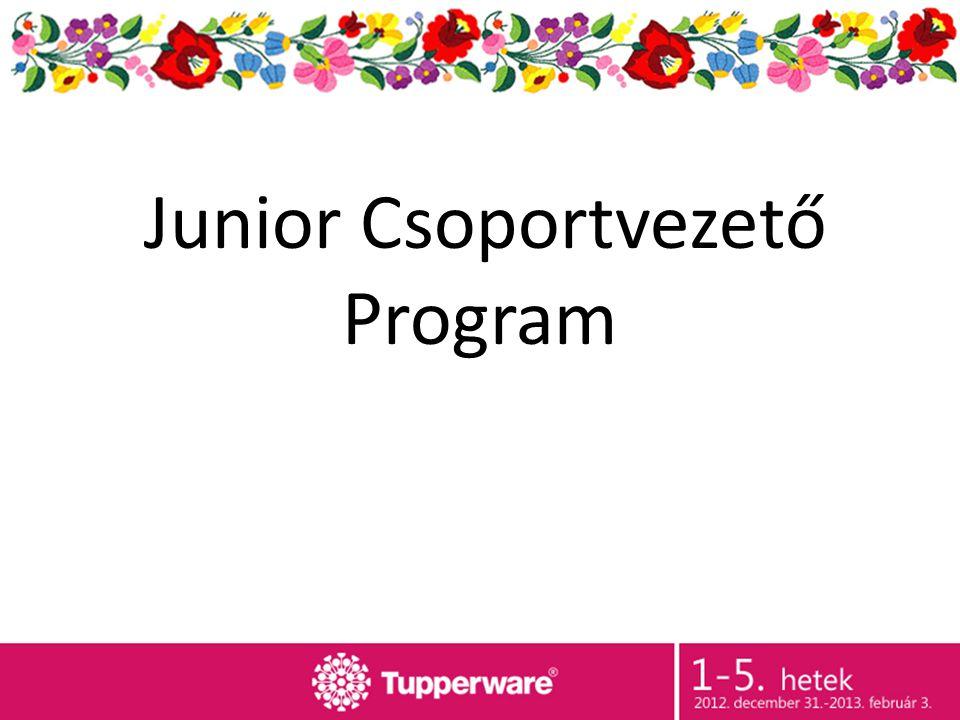 Junior Csoportvezető Program