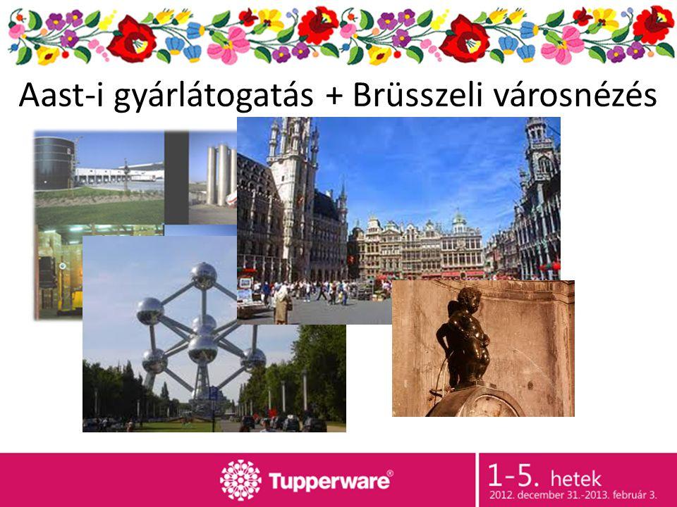 Aast-i gyárlátogatás + Brüsszeli városnézés