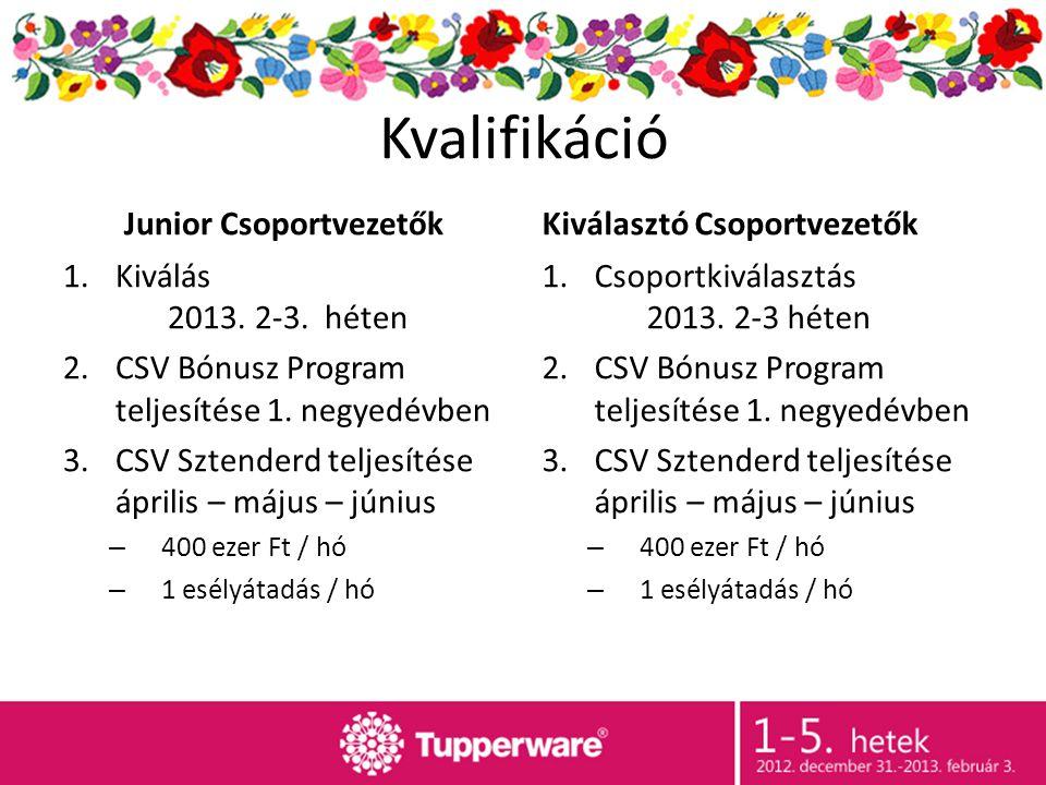 Kvalifikáció Junior Csoportvezetők 1.Kiválás 2013.