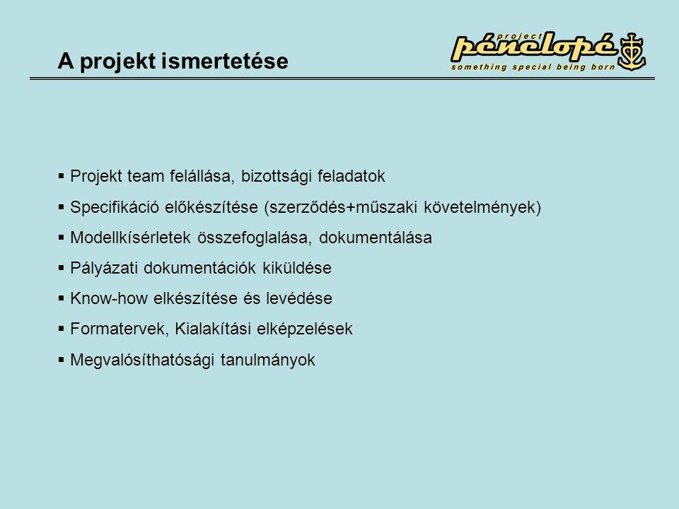A projekt ismertetése  Projekt team felállása, bizottsági feladatok  Specifikáció előkészítése (szerződés+műszaki követelmények)  Modellkísérletek összefoglalása, dokumentálása  Pályázati dokumentációk kiküldése  Know-how elkészítése és levédése  Formatervek, Kialakítási elképzelések  Megvalósíthatósági tanulmányok