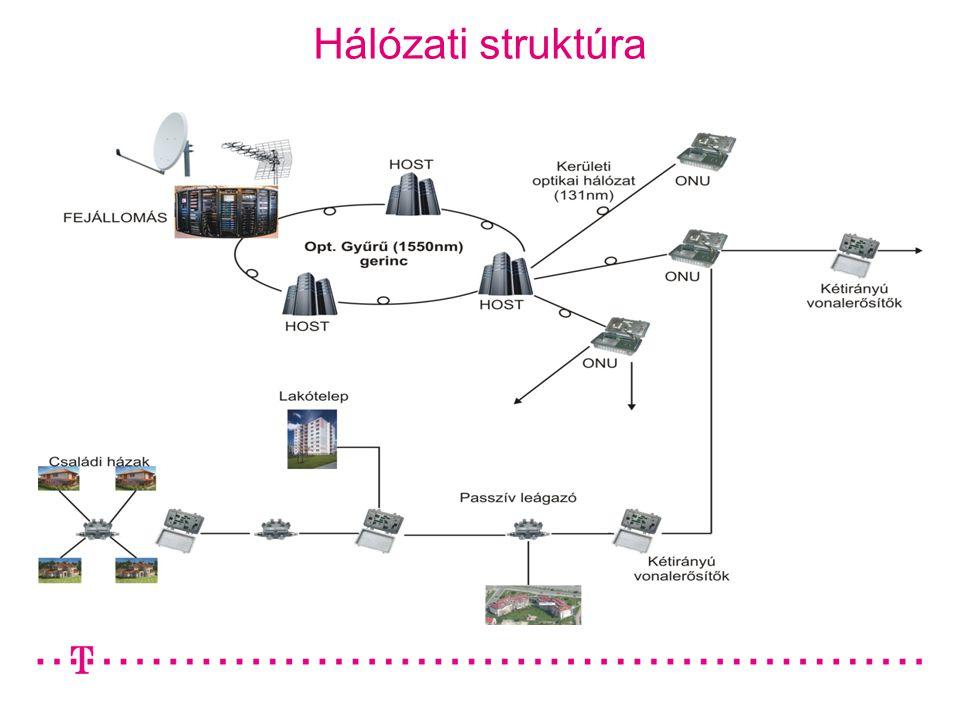 Hálózati struktúra