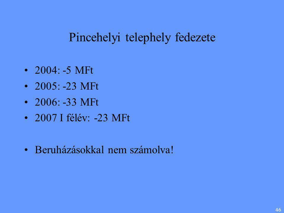 46 Pincehelyi telephely fedezete •2004: -5 MFt •2005: -23 MFt •2006: -33 MFt •2007 I félév: -23 MFt •Beruházásokkal nem számolva!