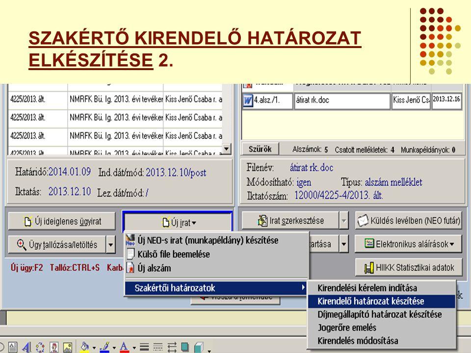 SZAKÉRTŐ KIRENDELŐ HATÁROZAT ELKÉSZÍTÉSE 2.