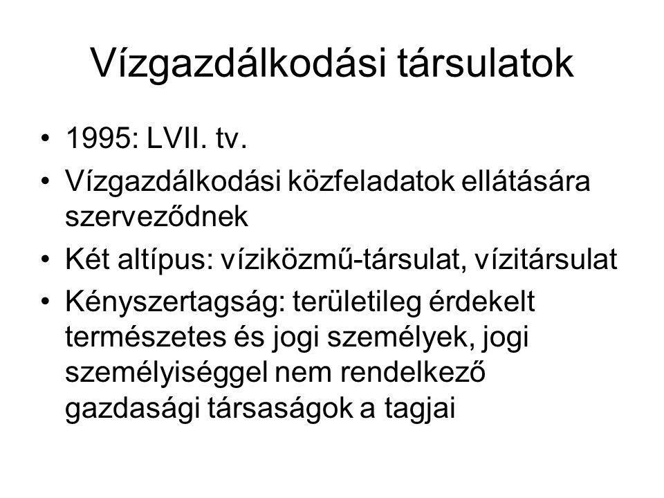 Vízgazdálkodási társulatok •1995: LVII.tv.