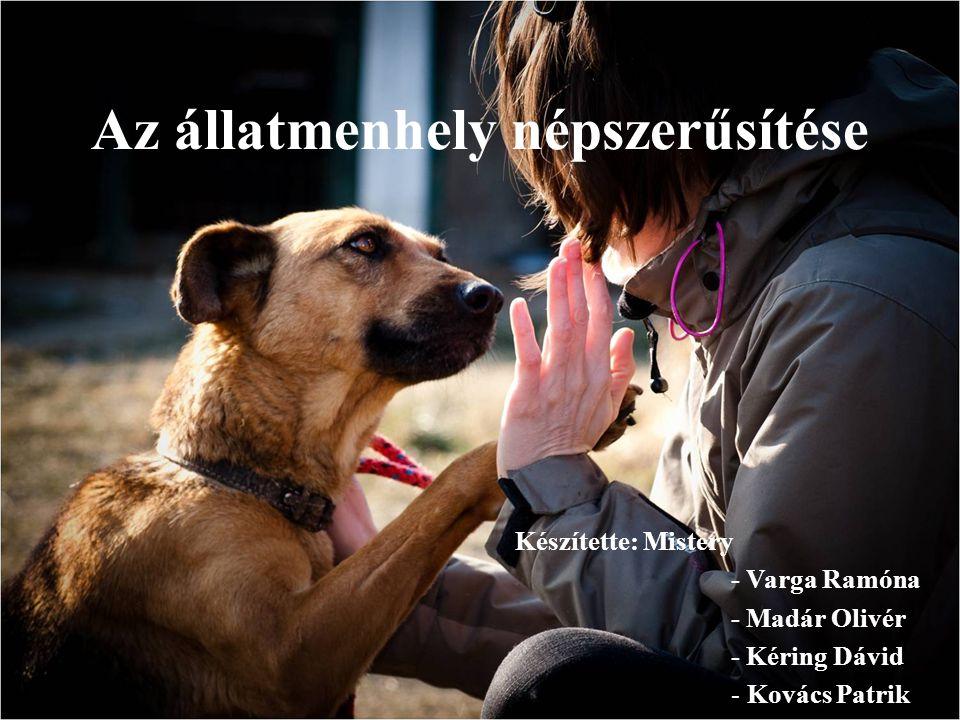 Az állatmenhely népszerűsítése Készítette: Mistery - Varga Ramóna - Madár Olivér - Kéring Dávid - Kovács Patrik